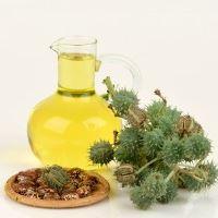 I51232 huile de ricin composition utilisation bienfaits